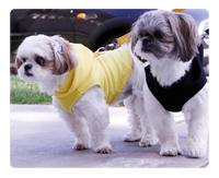 Gooby fleece hoodie harness