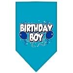 Birthday Boy Blue scarf