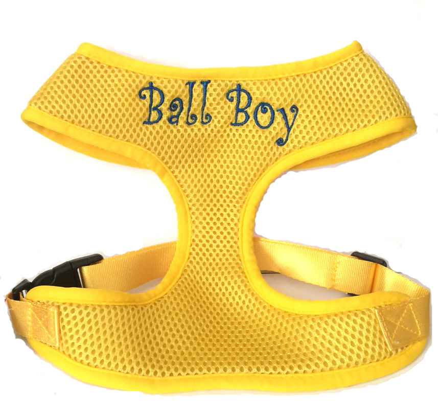 Yellow Harness Ball Boy Curlz