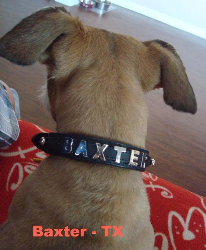 Baxter - TX