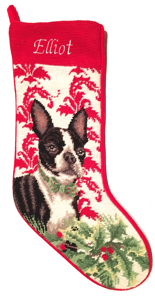 NP Stocking Boston Terrier Elliot