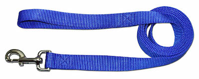 Breezy Mesh leash Blue