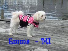 Emma MI