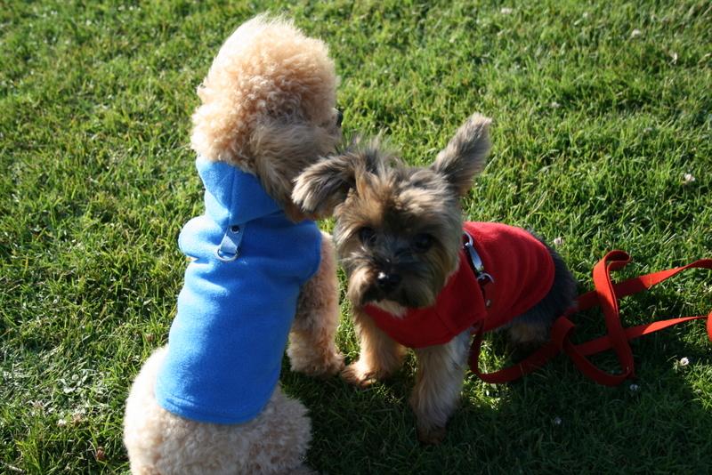 Gooby fleece duo