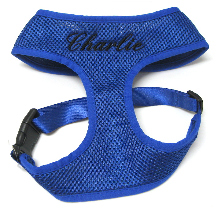Personalized Custom Embroidered harness Royal Blue Script Charlie