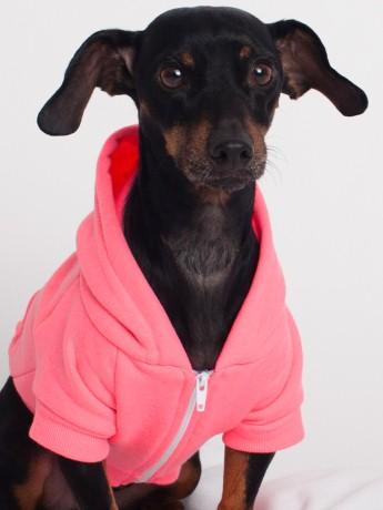 Amer App hoodie Neon Pink