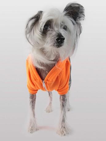Amer App hoodie orange