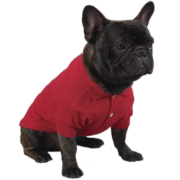 PoloDogShirtRed