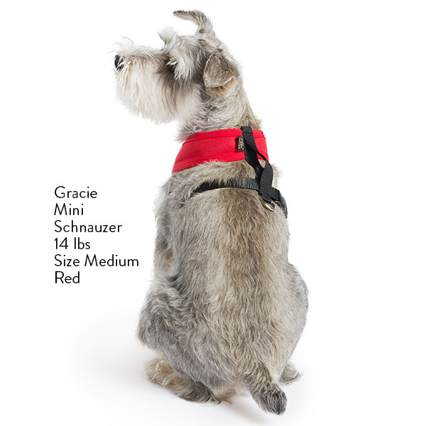 Crossover Harness Red