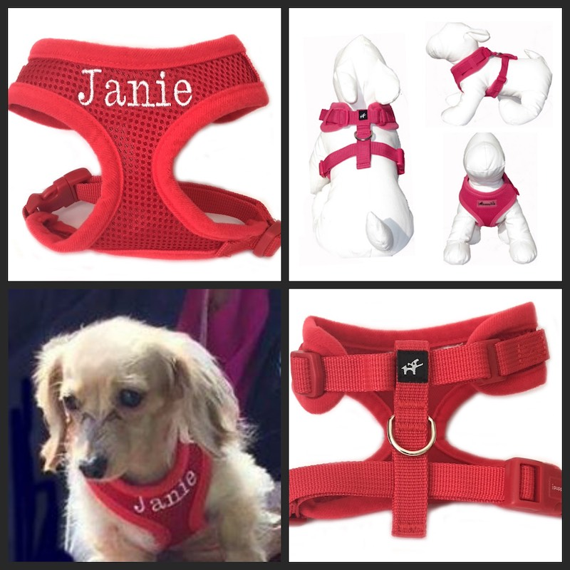#1 Best Seller Adjustable Neck Dog Harness Personalized XS - XXL, More Colors