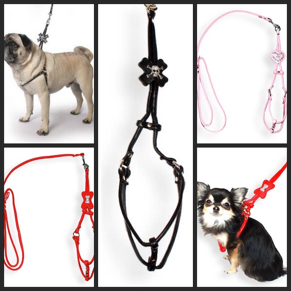 Step in Harness & Leash - Black Skull, Red Bone, Pink Heart for small dogs