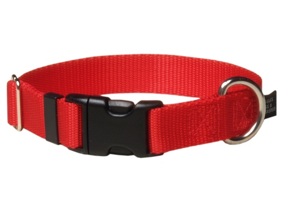 Personalized Keystone Dog Collar Quality Nylon Web  Made in the USA Vivid Colors