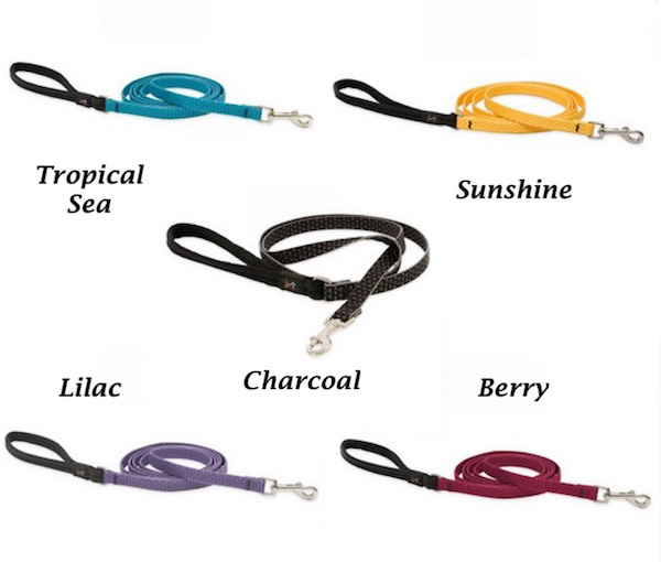Eco Friendly Dog Leash Plain or Personalized - Made in the USA with Recycled water bottles
