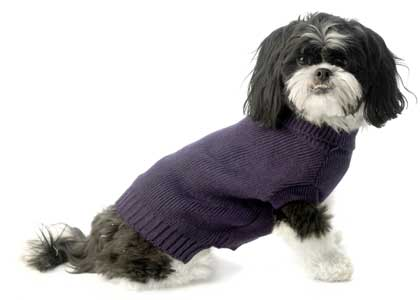 Classic Knit Dog Sweater Plum Purple European cut-Classic knit dog sweater european cut turtleneck plum purple