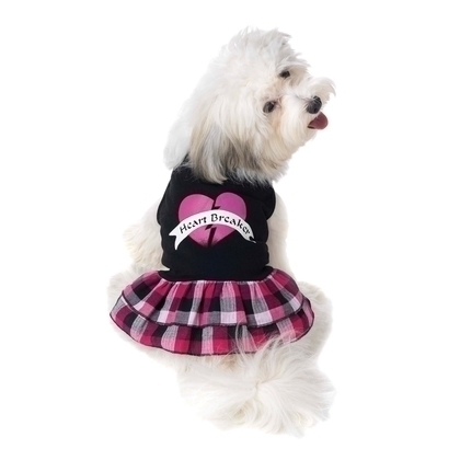 Designer Dog Dresses-Designer Dog Dress PetRageous Designs Heartbreaker dress Skull pink plaid small dog dresses