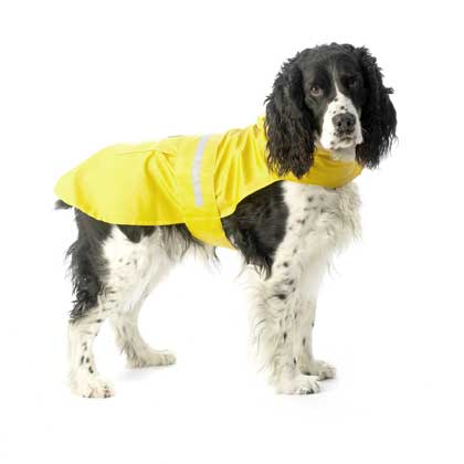 Dog Raincoat Yellow Reflective Slicker - Plain or Personalized