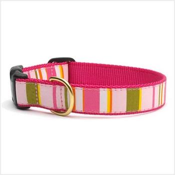 UpCountry Designer Donna Stripe Dog collar