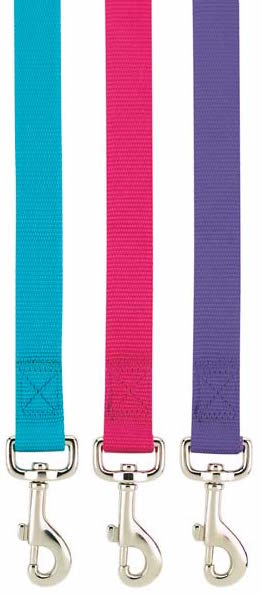 Matching Leash to Personalized Nylon Dog Collar - Vibrant Colors